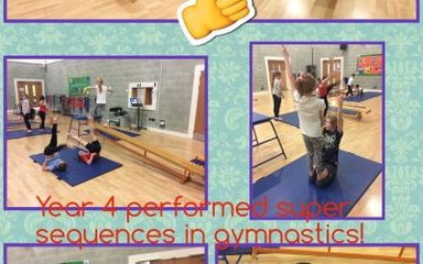 We Are Gymnasts!