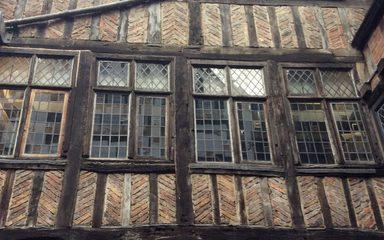 Tremendous Tudors