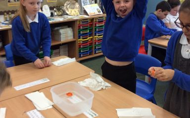 Scientists in Year 4