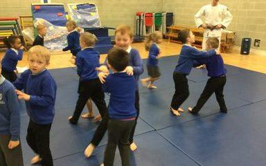 Judo Taster