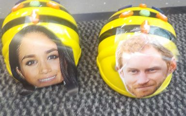 Bee-Bot Harry and Bee-Bot Meghan!