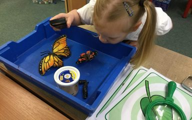 Very Hungry Caterpillars and Nursery Children!