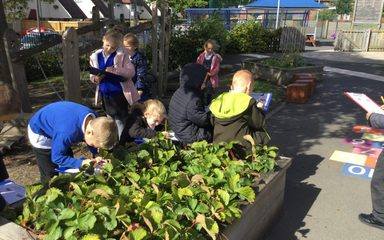 Science in Year 2