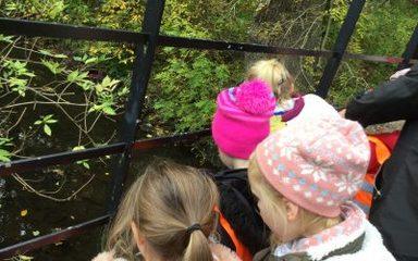 Autumn fun at Jesmond Dene